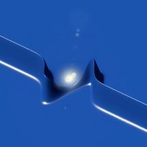 fel-profilin.cavalieri-2012-004-800